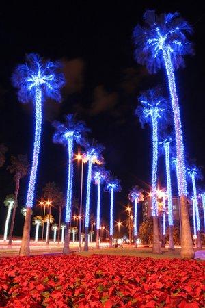 Navidad en Gran Canaria