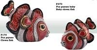 Familie von Anemonenfisch - DeRosa-Rinconada