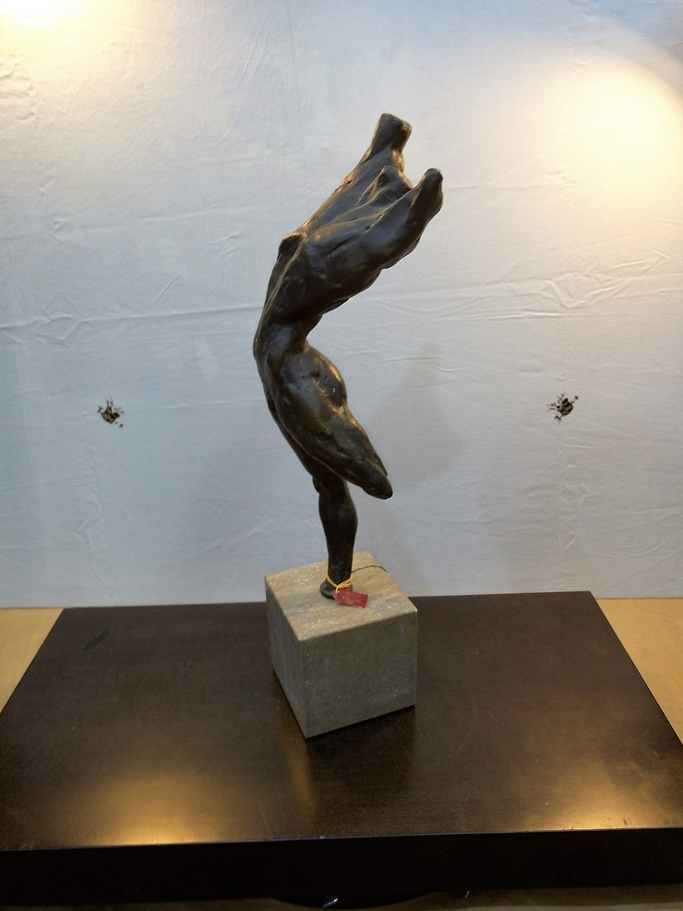 Arte Moreno - Salto