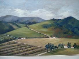 Carla Monti - Campagna con vigne - Country with vineyards
