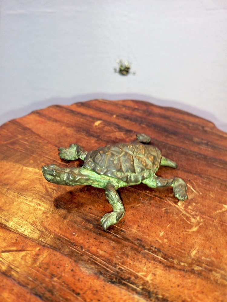 Estudio de Arte Moreno - Tortuga de bronce