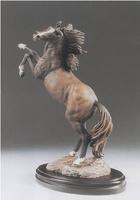 Casasola - Stallion I