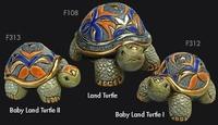 Rinconada - Familia de tortugas de tierra